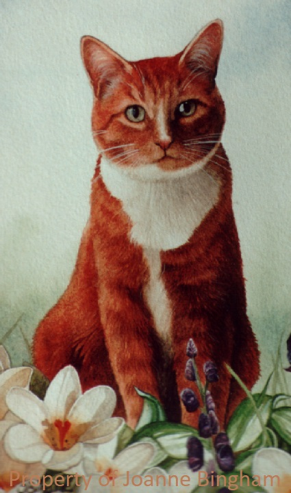 Cat 2 watercolour 1