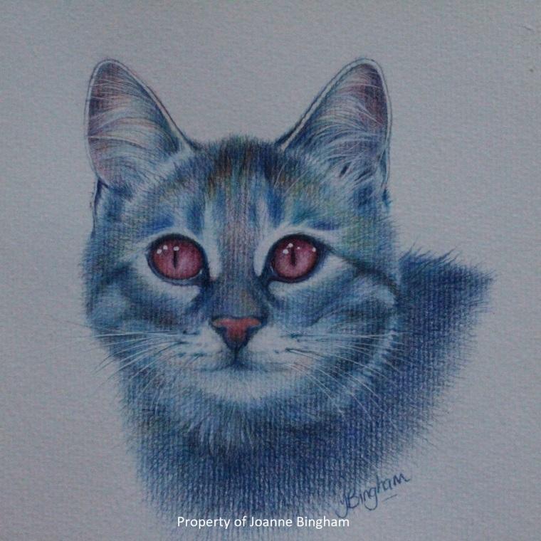 Cat 3 pencil 2