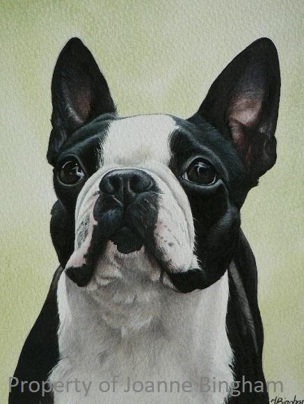 Dog 10 watercolour 6