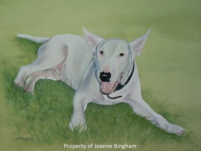 Dog 16 watercolour 12