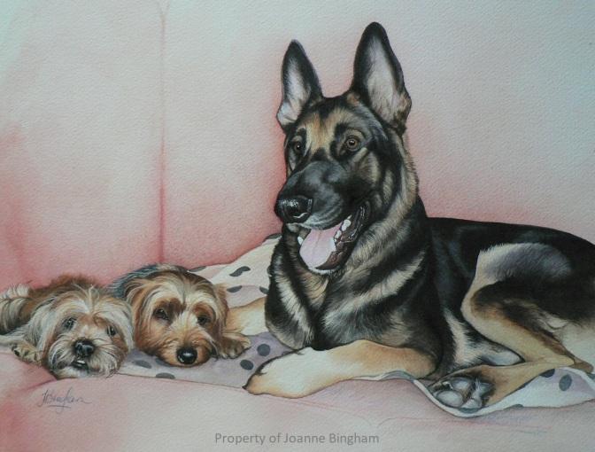 Dog 19 watercolour 15