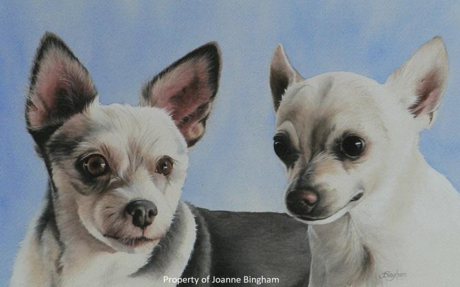 Dog 2 watercolour 2