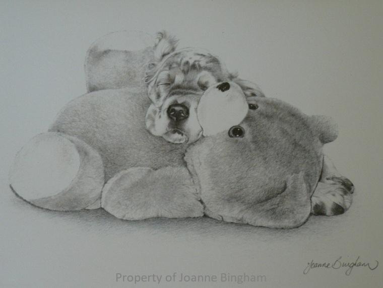 Dog 24 Pencil 8
