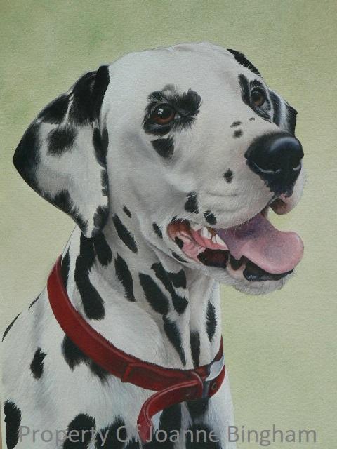 Dog 5 watercolour 4