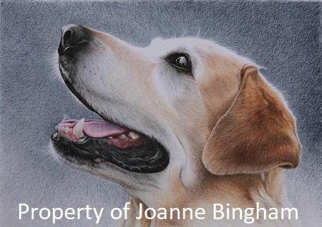 Dog 6 Pencil 2