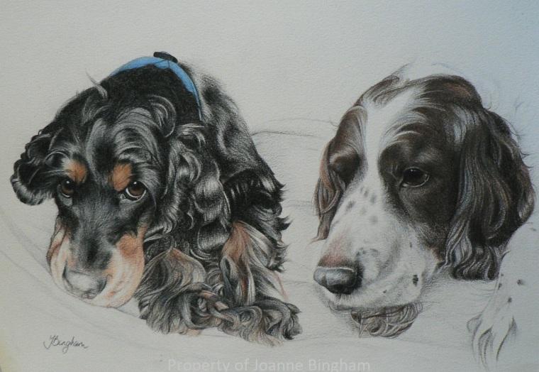 Dog 7 Pencil 3
