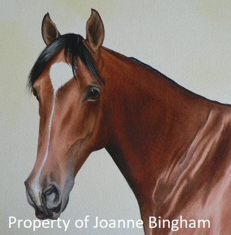 Horse 1 watercolour 1