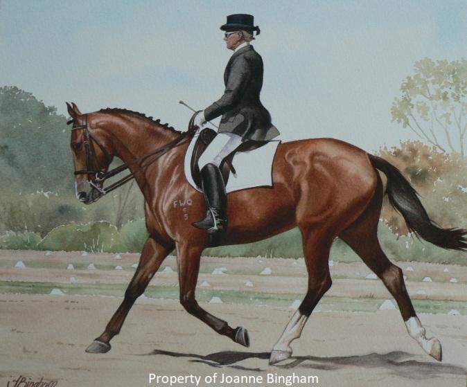 Horse 13 watercolour 12