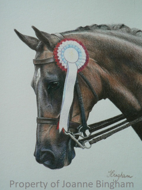 Horse 17 pencil 3
