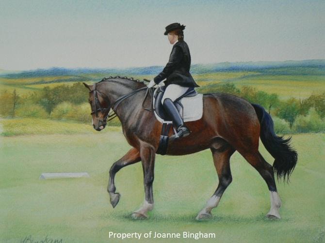 Horse 18 watercolour 16