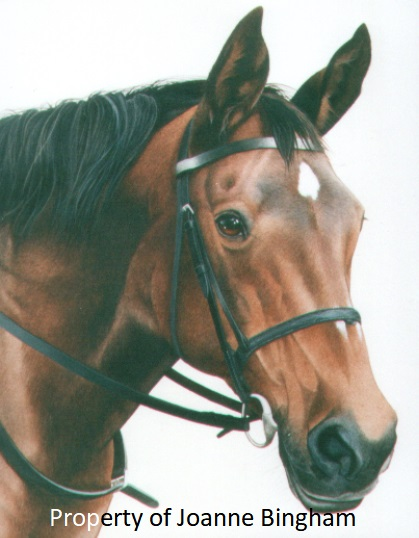 Horse 8 watercolour 6