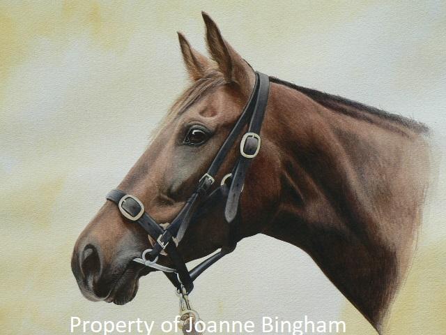 Horse 9 watercolour 8