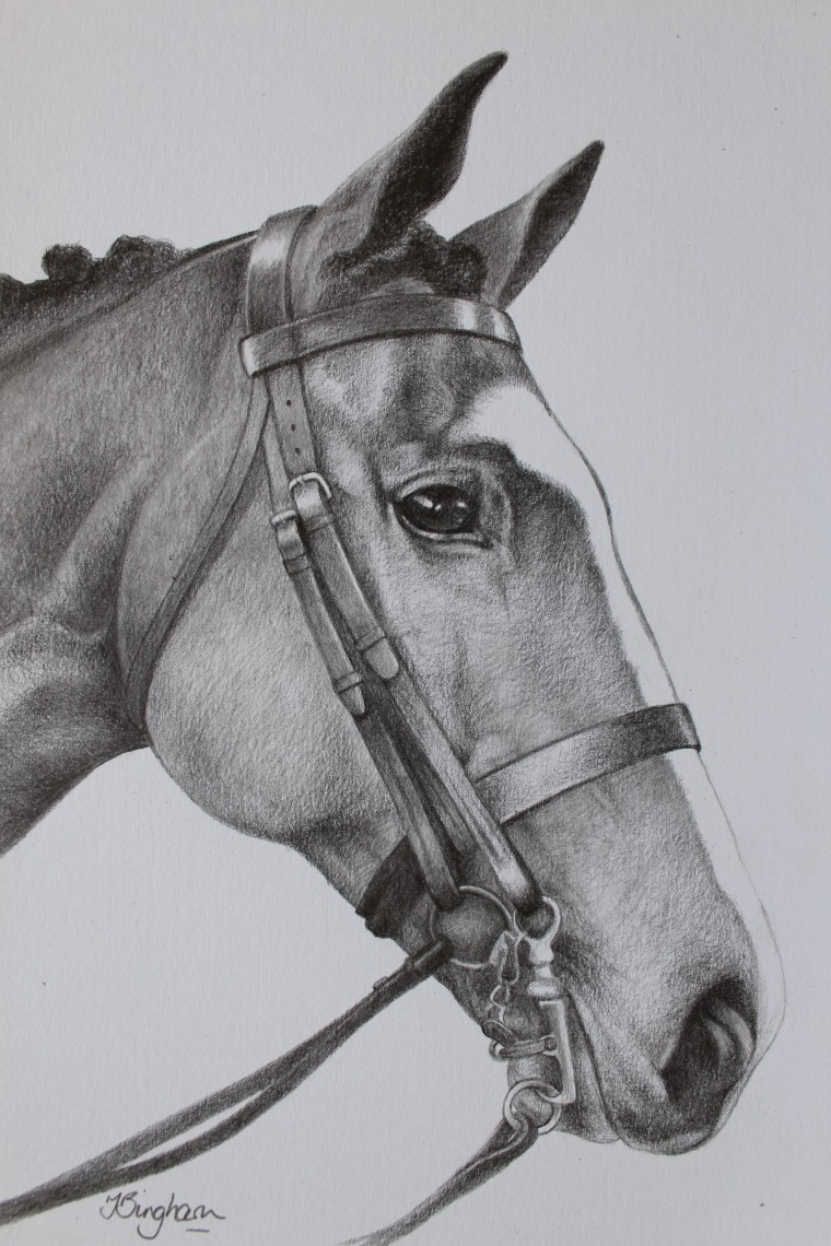 Horse drawing 2018
